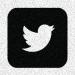 twitter-logo-grain